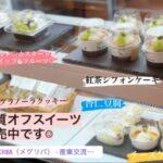 糖質オフスイーツの生菓子も委託販売スタート🍰🍮