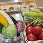 オーガニック野菜♡