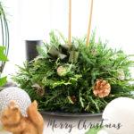 お知らせ♪Blooming days × WABISACHIコラボクリスマスwork shop🎄